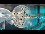 Prezentare IL Coil Clean - curatarea de mucegaiuri si virus a schimbatoarelor de caldura